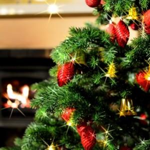 クリスマスツリーのオーナメントを選ぼう!